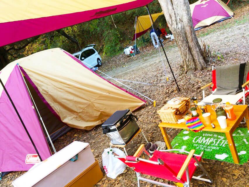 キャンプ 収納棚